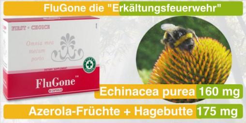 18_FluGone_gut-web