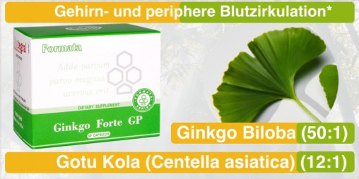 21_Ginko_Forte_santegra-international-com