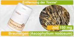 Jod aus Kelp - Norwegian Kelp gegen Jodmangel Symptome