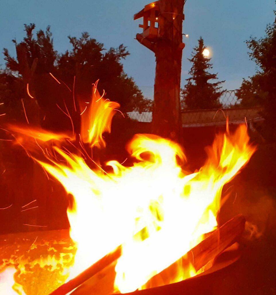 Die Organuhr - Das Element Feuer
